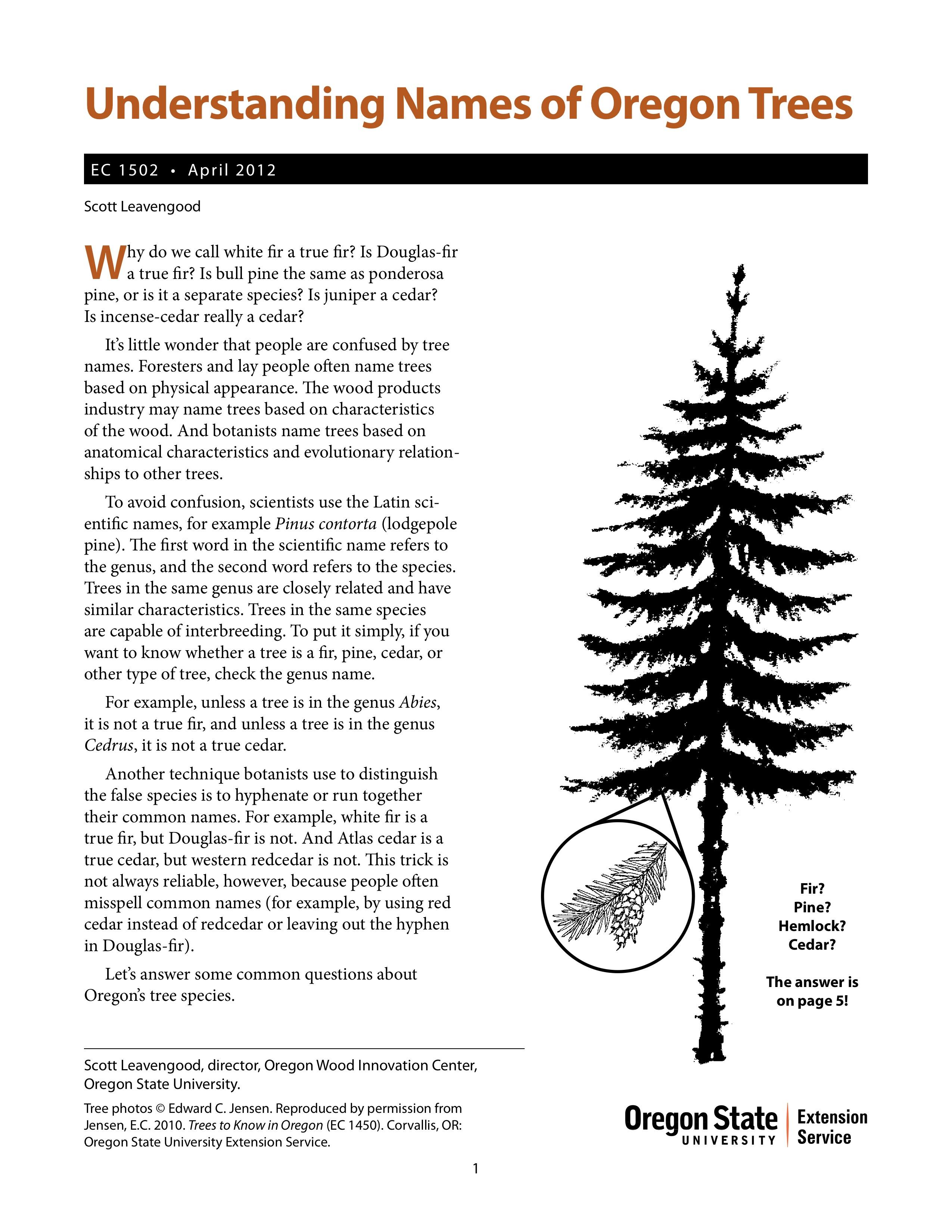 Understanding Names of Oregon Trees | OSU Extension Catalog