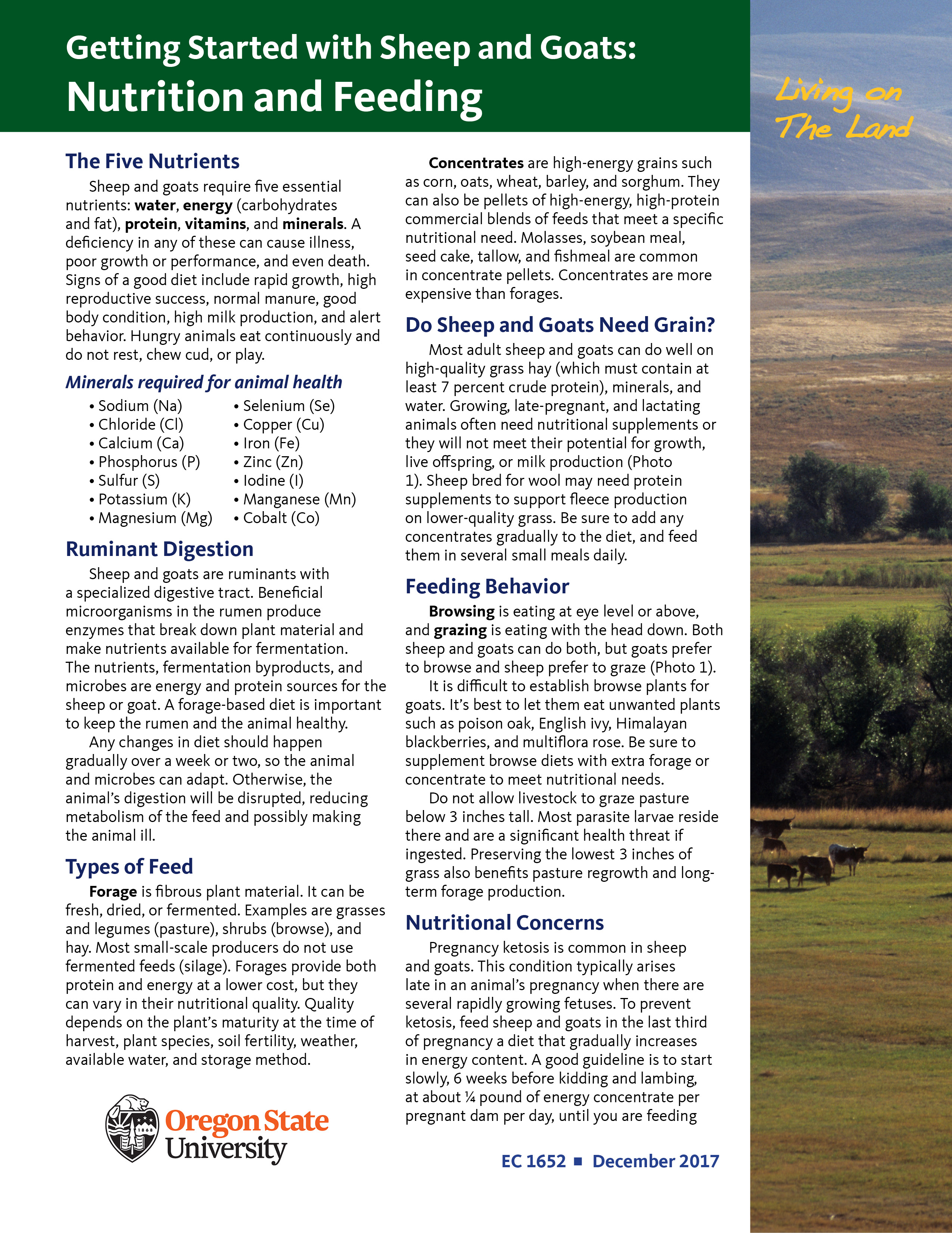 Living on the Land: Getting Started with Sheep and Goats