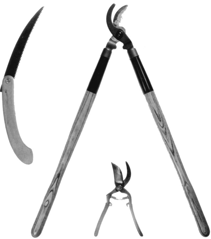 Figure 14 shows a pruning saw (upper left), a long‑handled pruning shears (center), and hand shears (bottom).