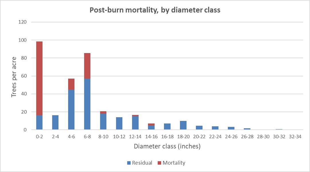 Postburn mortality by diameter class