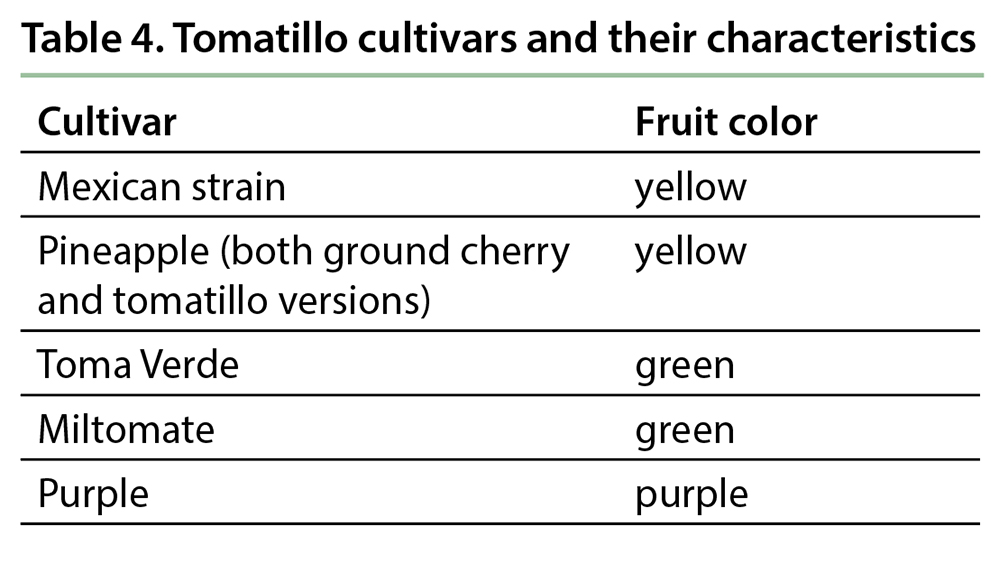 Table 4. Tomatillo cultivars and their characteristics