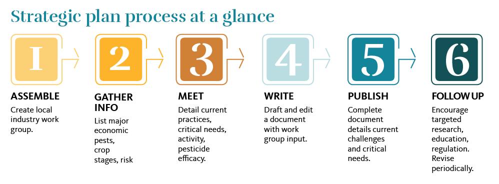 Strategic plan process at a glance