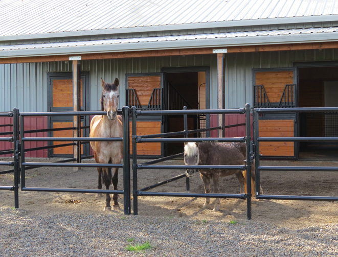 Figure 5. Paddocks should fit the number, size and personalities of your horses; fences should be strong, safe and secure. Photo: Melissa Fery, © Oregon State University