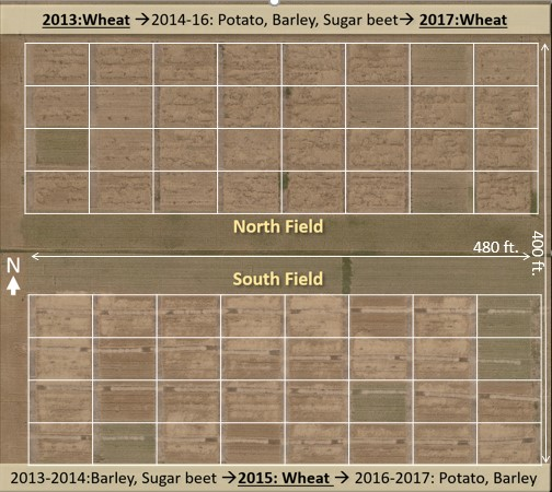 Photo: David Tarkalson, USDA ARS  Figure 2. General layout and crop rotation scheme for long-term manure application trials in Kimberly, Idaho. Plots are blocked from east to west with four replications and eight treatments per field. Photo taken postharvest in August 2017 with wheat in the north field and barley in the south field.