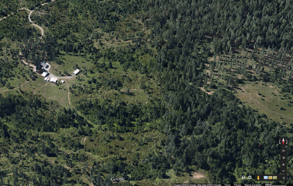 Figure 9. A 3D view of a forested landscape was created using angled aerial photographs from Google Maps.