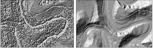 Figure 10. Two maps of the same area produced from LiDAR data showing terrain (right) and vegetation (left). Data from DOGAMI Lidar Viewer.