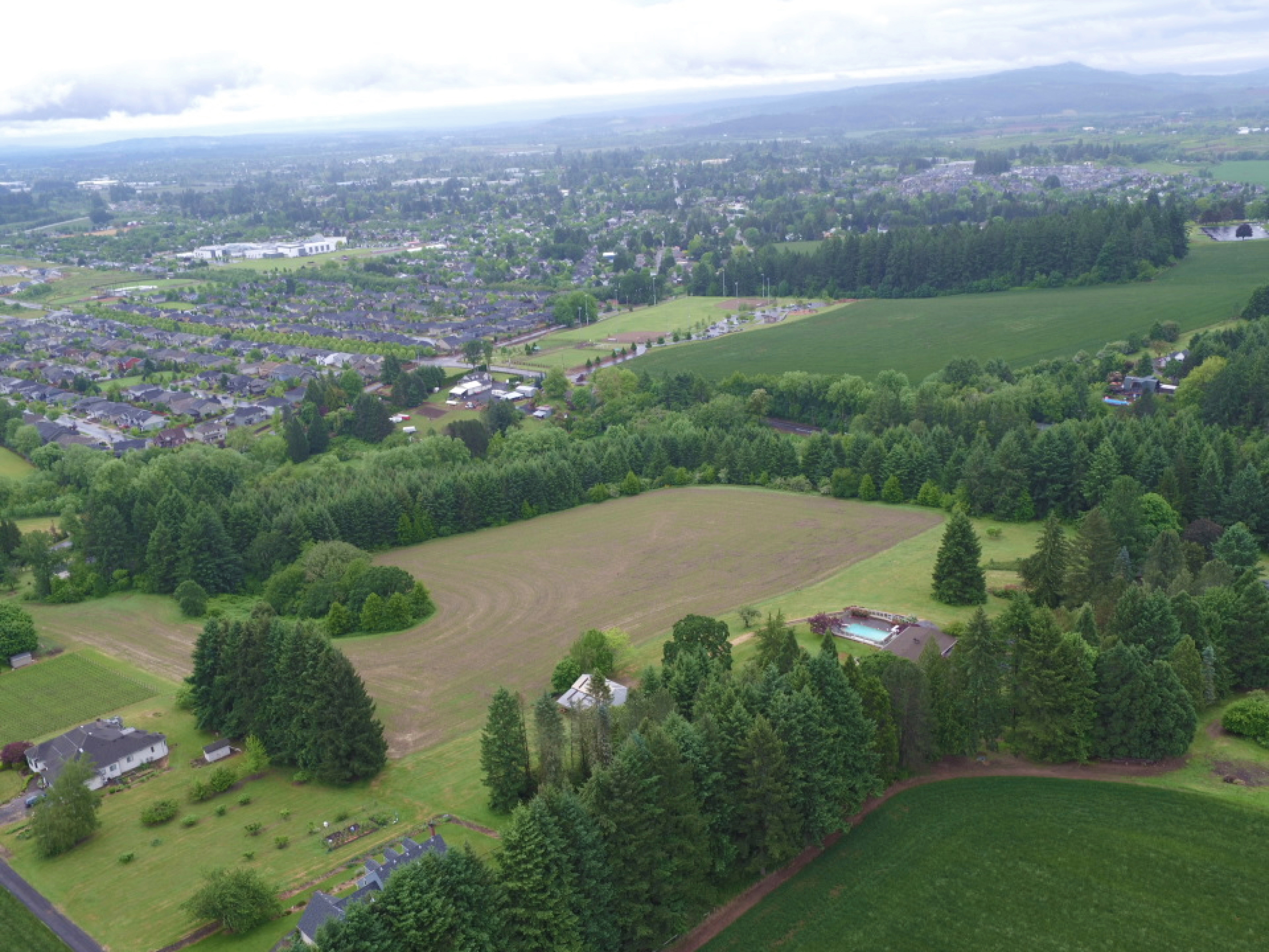 An aerial photo taken above Forest Grove shows hedgerows bordering the urban growth boundary and used as buffers between fields.