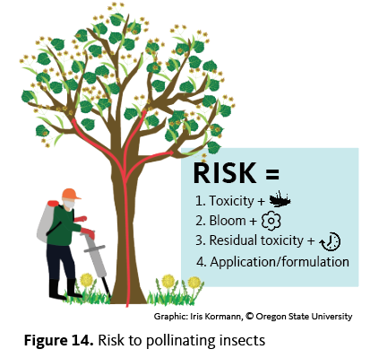 Risk = toxicity + bloom + residual toxicity + application/formulation