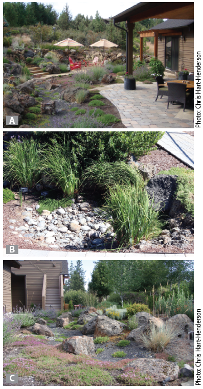 patio surface, bioswale and dry creek bed