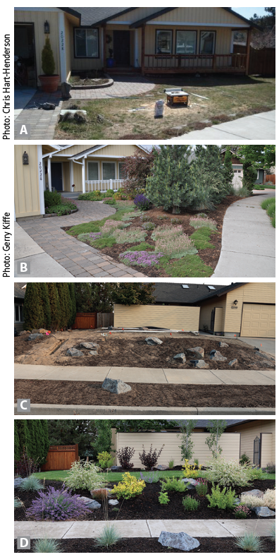 Before and after images of garden designs