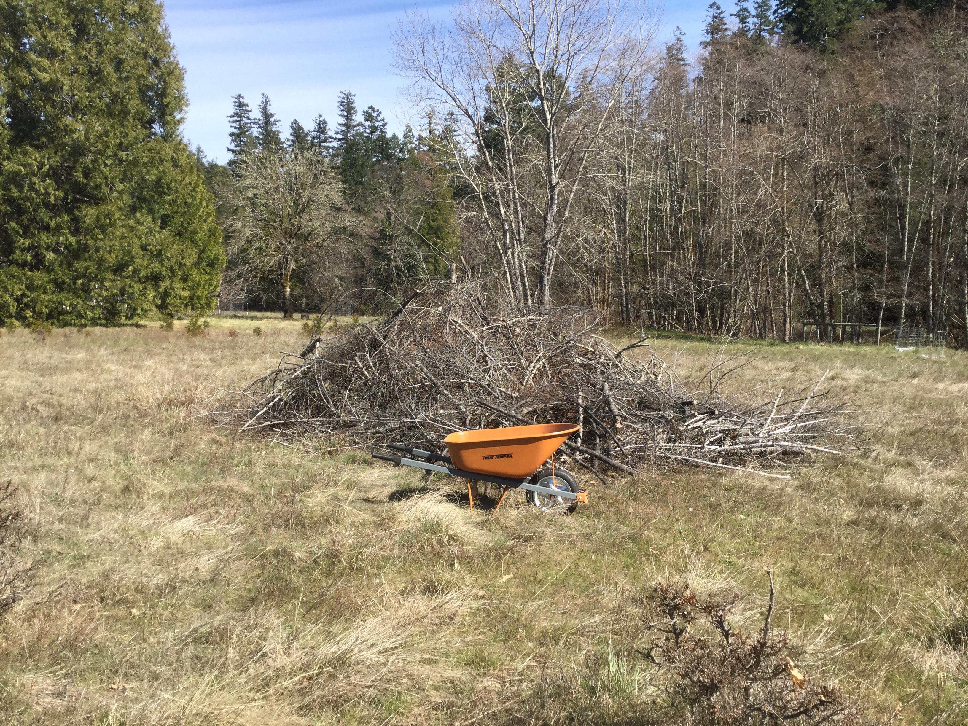 Brush pile and wheelbarrow