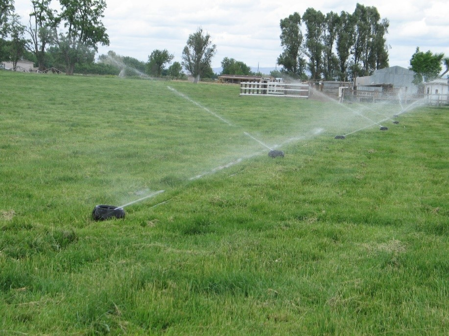 Photo: Melissa Fery, © Oregon State University Figure 11. Some regions depend on irrigation for continued pasture growth throughout the season.