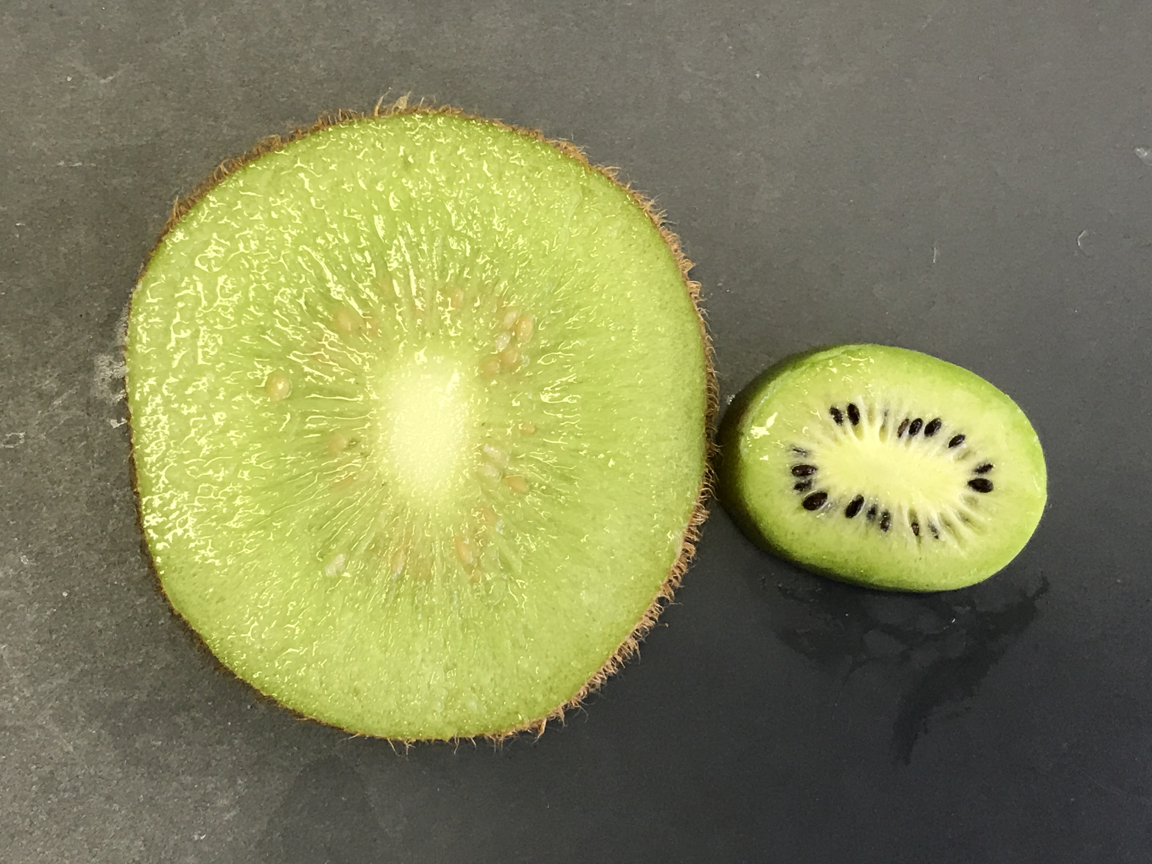 Large kiwifruit at left with brown seeds, small kiwiberry at right with black seeds
