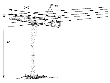 T-shaped bar and wires