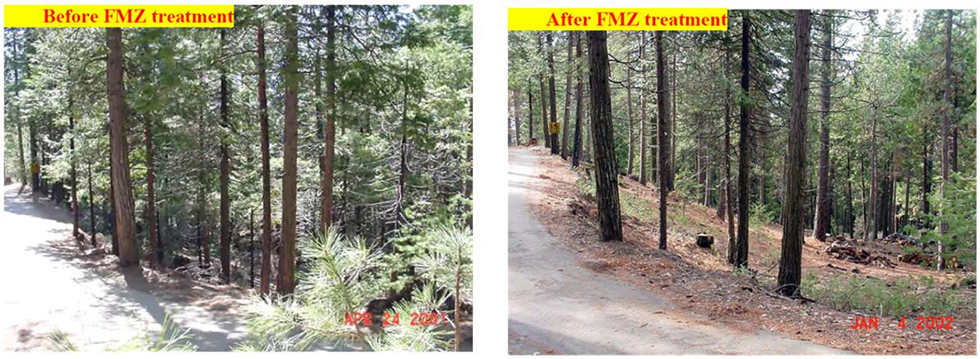 Figure 6. Photos show an area before and after FMZ treatment to reduce the fire hazard.