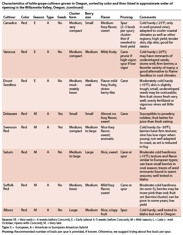 Characteristics of table grape cultivars grown in Oregon, sorted by color and then listed in approximate order of ripening in the Willamette Valley, Oregon, page 3.