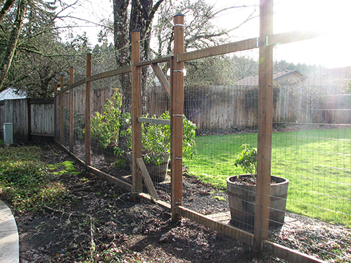 An effective and attractive urban deer fence along a common area