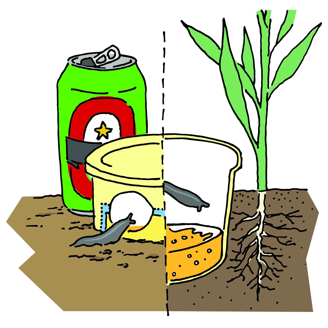 Slug crawling into beer trap