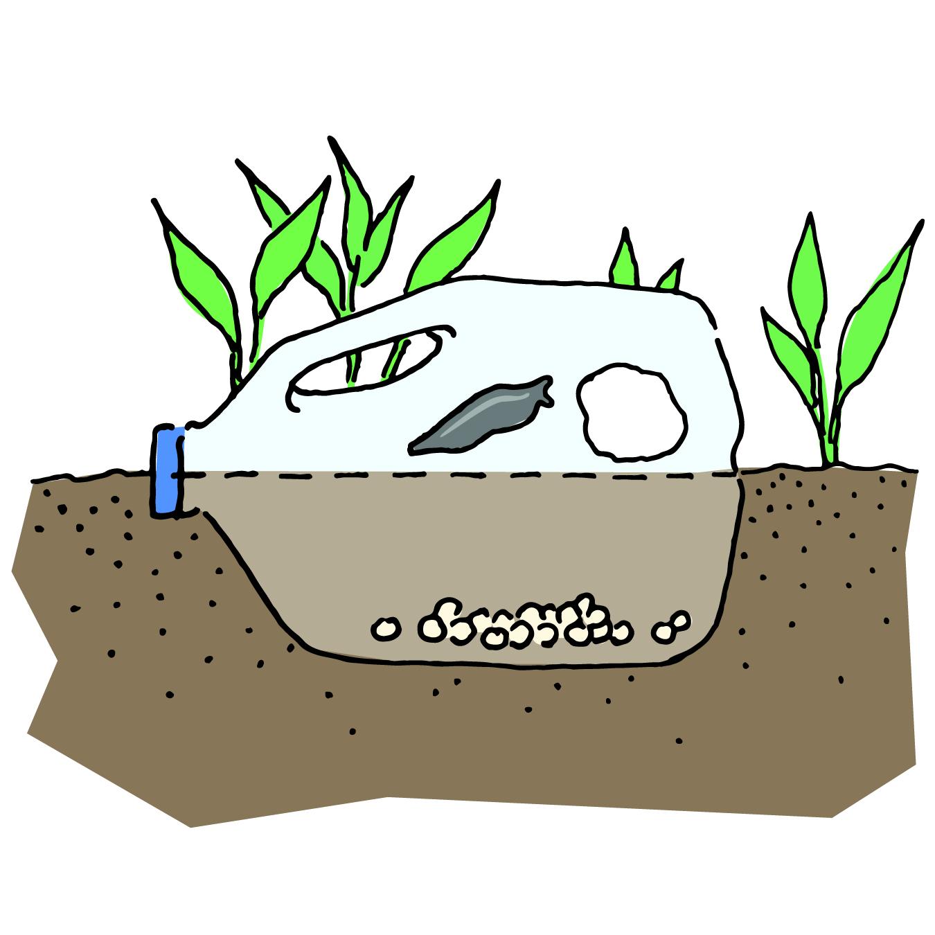 Milk jug with slug bait partially buried in the ground