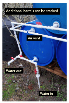 Figure 10b. Food-grade, 55-gallon barrels connected for rainwater storage and delivery. The filter system is separated from the storage tank, but filtered water is piped underground to the storage barrels. The collection and filter system must be higher than the storage barrels.
