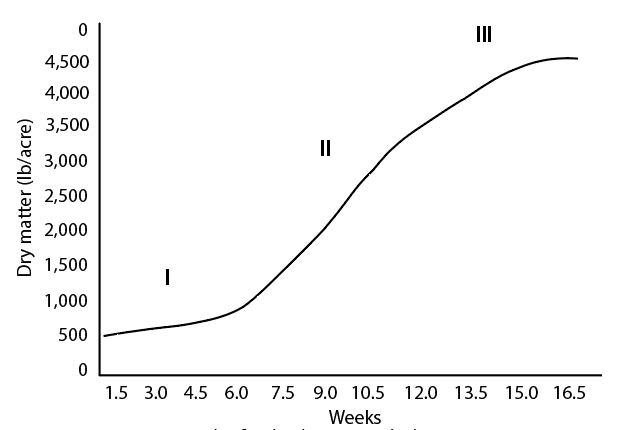 Graph showing orchardgrass growth phase response to time