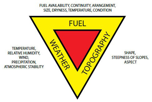 Figure 1. The Fire Behavior Triangle