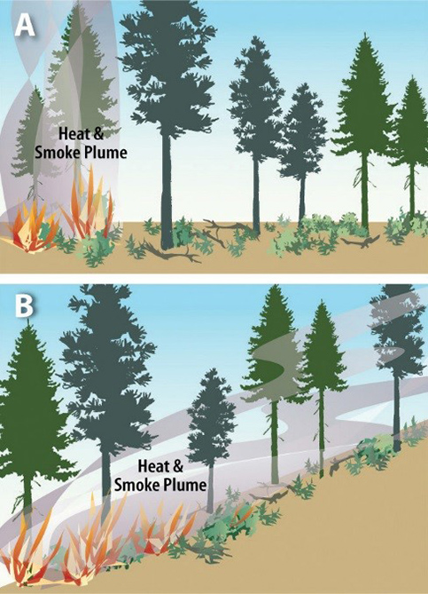 Figure 2. Fire is influenced by many factors, including geography, climate, weather, and topography.