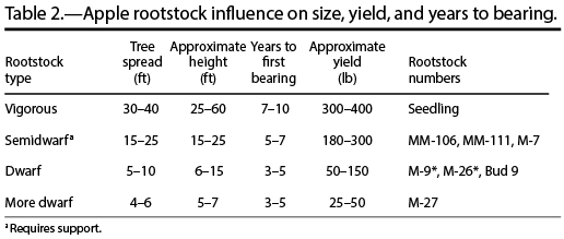 Apple rootstock influence on size, yield, and years to bearing.