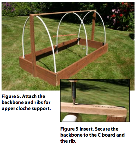 Attach the 5 x 5-foot 6-mil polyethylene plastic sheeting to the ends of the cloche using PVC clips.