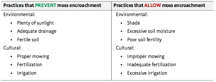 Conditions and practices that prevent and encourage moss encroachment
