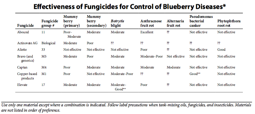Effectiveness of Fungicides for Control of Blueberry Diseases