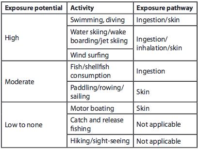 Pathways for potential exposure to cyanobacteria from recreational activities.