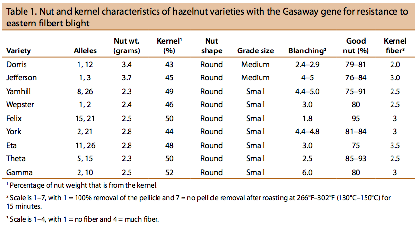 Nut and kernel characteristics of hazelnut varieties with the Gasaway gene for resistance to eastern filbert blight