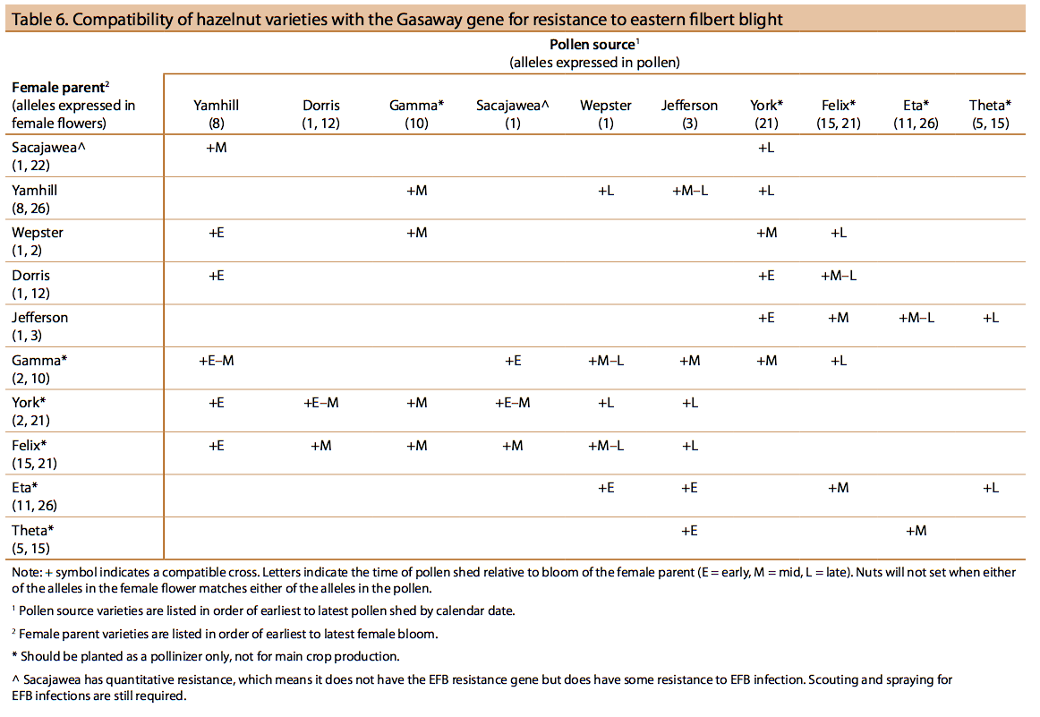 Compatibility of hazelnut varieties with the Gasaway gene for resistance to eastern filbert blight