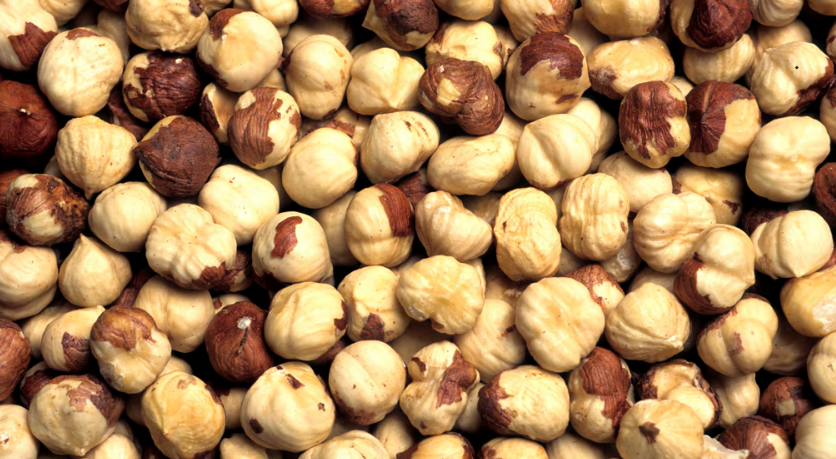 Hazelnut Varieties