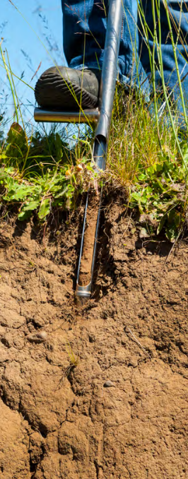 Collecting soil samples with soil probe