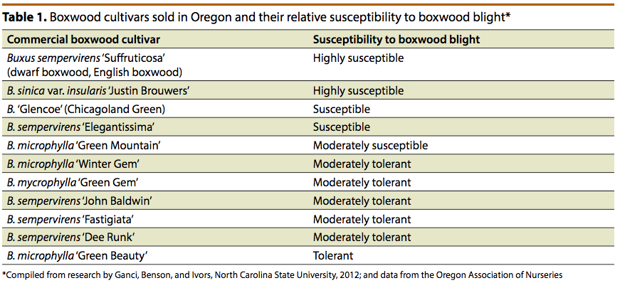 Boxwood cultivars sold in Oregon and their relative susceptibility to boxwood blight
