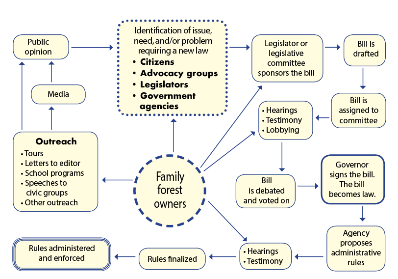 "Figure 2.—Making the ""sausage."" A simplified view of the forest policy making process and where family forest owners can fit in."