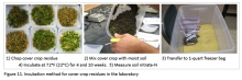 Figure 11. Incubation method for cover crop residues in the laboratory