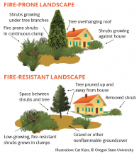 Fire-prone landscape, top, and fire-resistant landscape, bottom