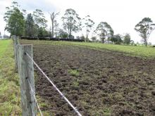 muddy pasture and fence