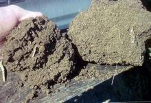 Bumpy, loose soil, left; hard clod, right
