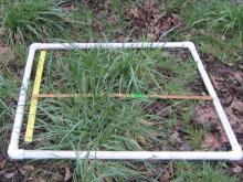 one square meter quadrant in PVC frame