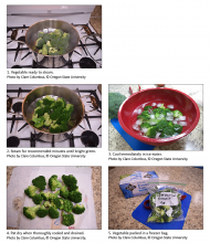 The process for steaming and then immediately cooling, drying, and packaging vegetables for freezing.