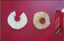 This photo shows the difference between an apple slice treated with a browning-retarding agent like ascorbic acid (left slice) and an untreated slice (right slice).