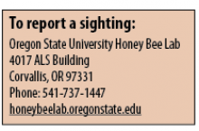How to report a sighting