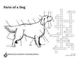 Parts of a Dog Puzzle | OSU Extension Catalog | Oregon ...