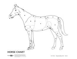 Image of 4-H Horse Chart Leader Guide publication