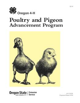 Image of Oregon 4-H Poultry and Pigeon Advancement Program publication