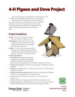 Image of 4-H Pigeon and Dove Project publication
